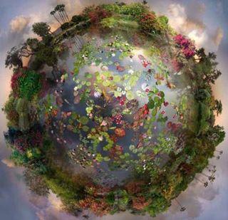 Mindful world image
